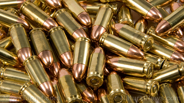 what is subsonic ammunition